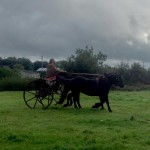 Filming Setanta's Challenge on location : a chariot